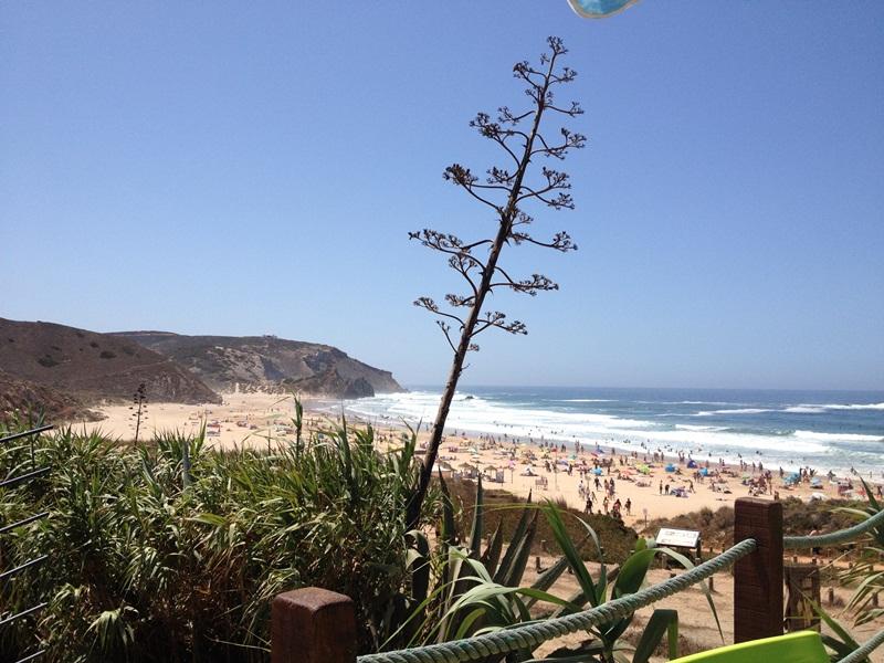 Surfen Amado beach foto 2